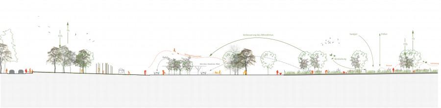 Aspernlakesidepark_LAND_2011_sektion2