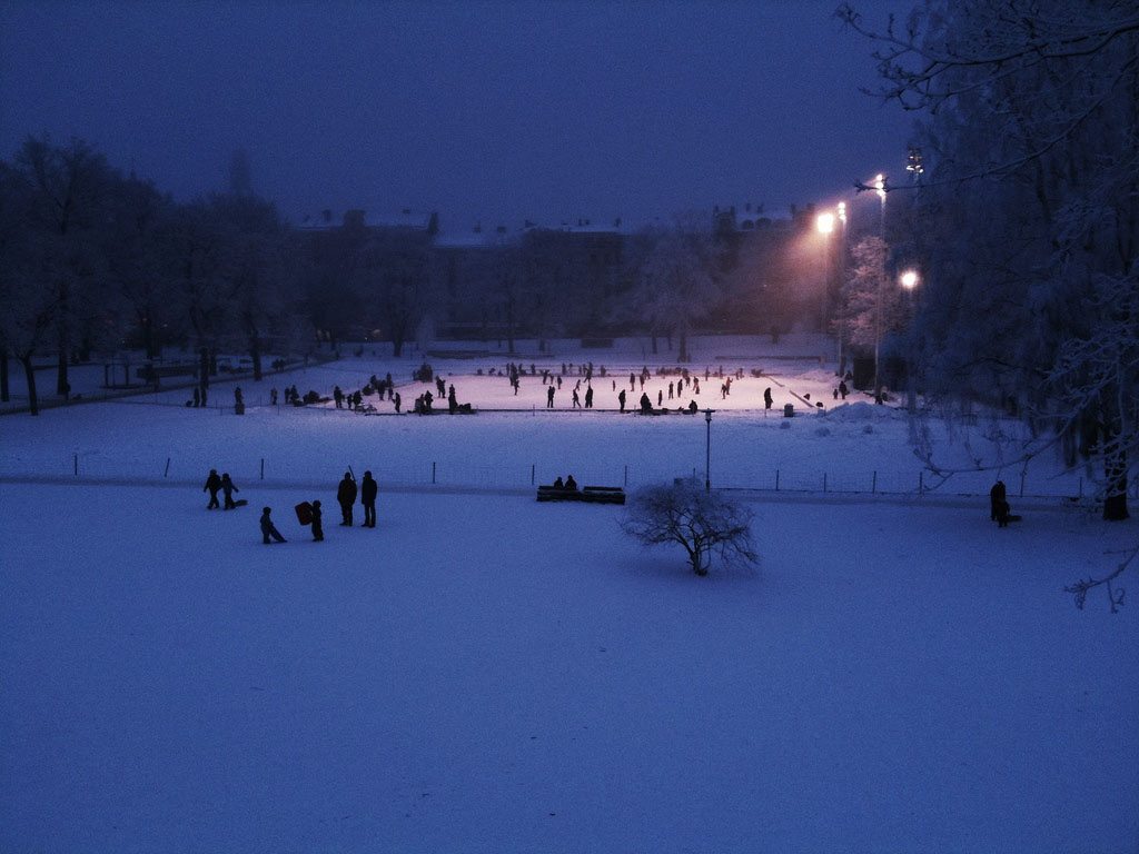 Vasaparken_LAND_2007_vinter